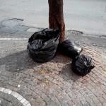 27/10/2013 ore 08.13 Via Domenico Riccardi altezza civico 60